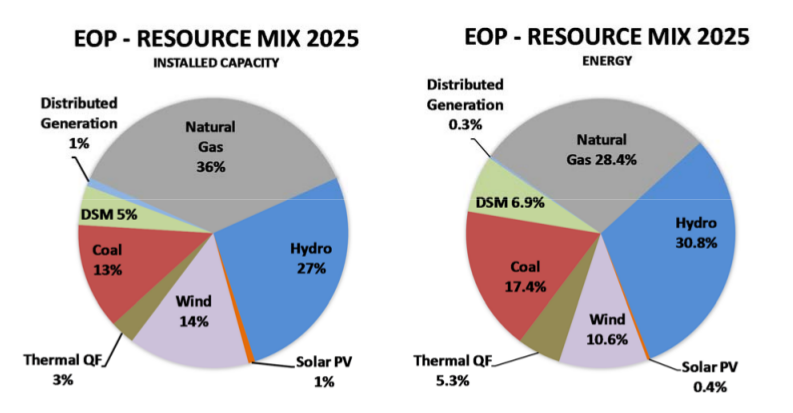 resource mix 2025